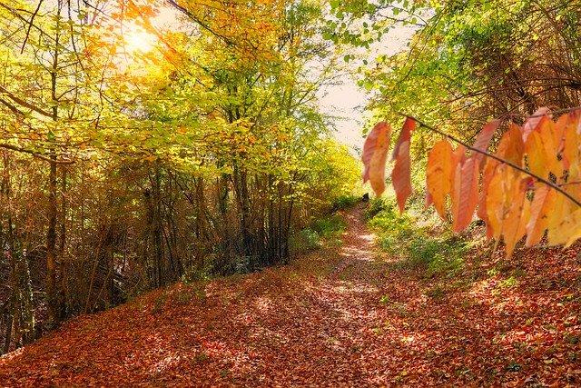 Destinations de l'automne